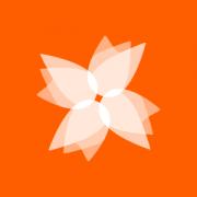 windmill_bug_white_on_orange